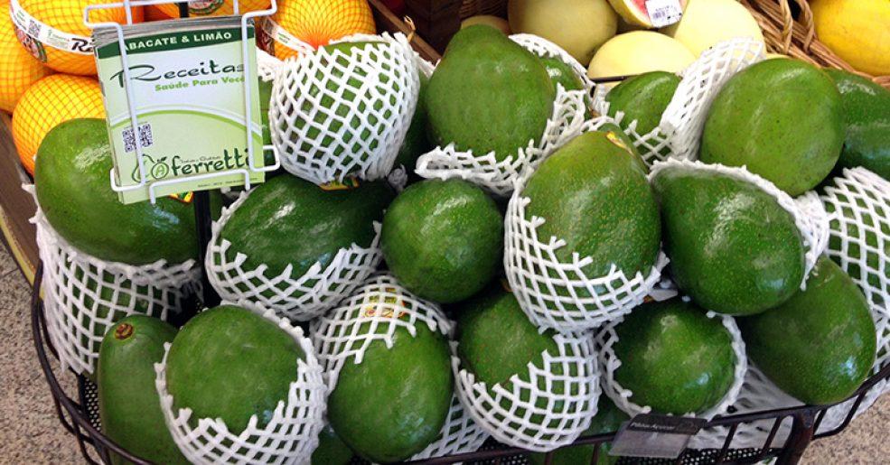 L.A Ferretti no especial sobre o panorama do abacate