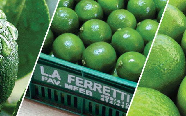 Limão: Conheça os benefícios desta fruta milagrosa