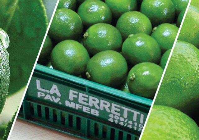 L.A. Ferretti lança Cartilha Orientativa do Limão Tahiti