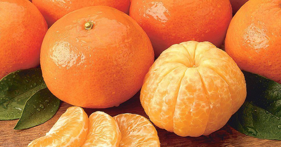 É época da tangerina! Capriche nas receitas