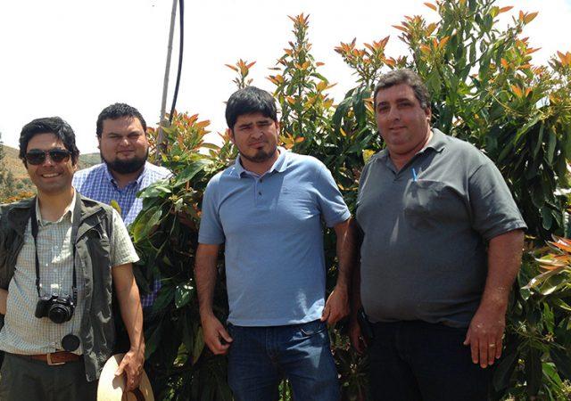 L.A. FERRETTI visita produtores de abacate no Chile