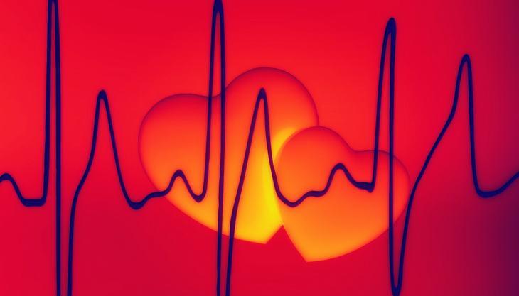 Reduz o Nível de Problemas e Doenças no Coração