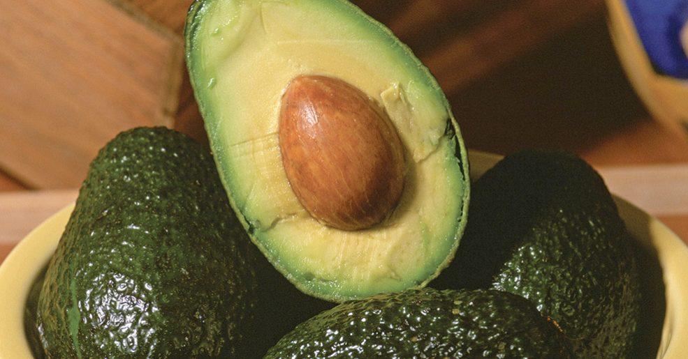 4 usos alternativos para a semente de abacate
