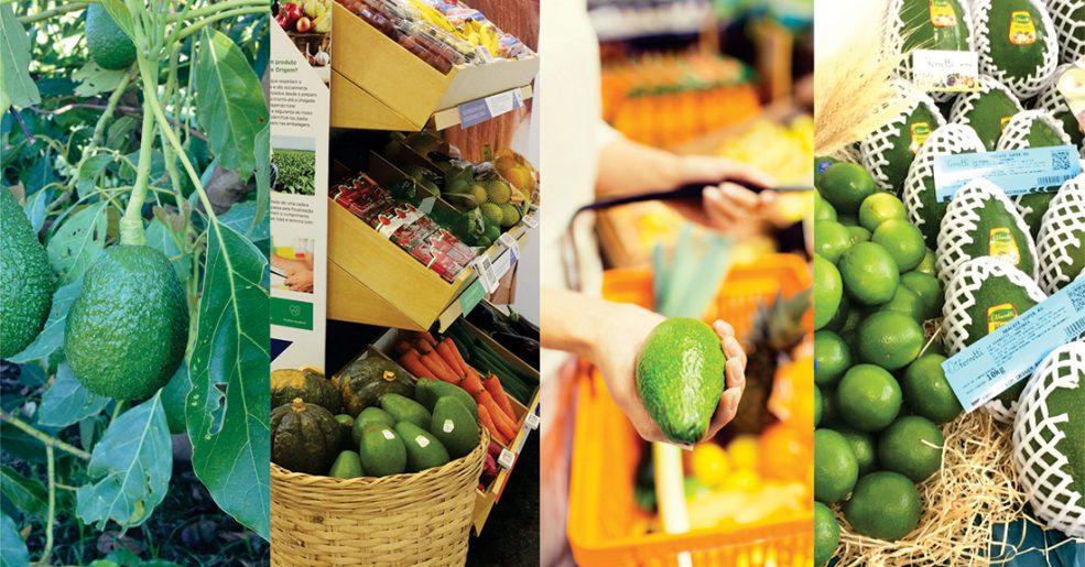 Vegetais Saudáveis e ABRAS: Tecnologia do Campo ao Supermercado