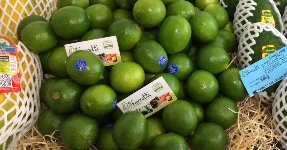 TOP 16 grandes benefícios que o limão pode oferecer