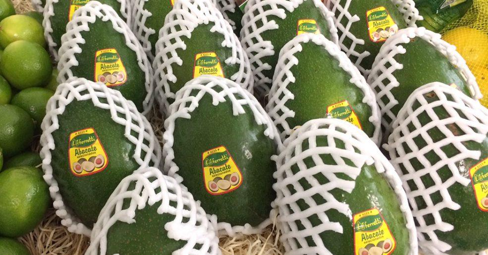 Você vai querer comer abacate diariamente após conhecer seus benefícios