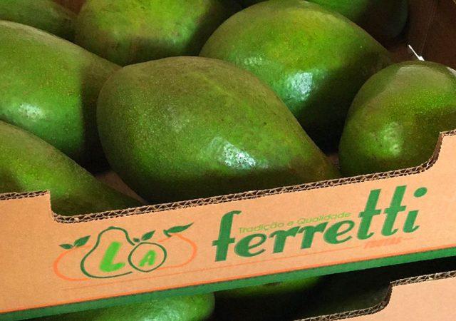 Abacate: 1 por dia para reduzir o colesterol