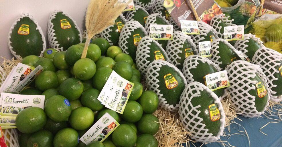 Abacate e Limão