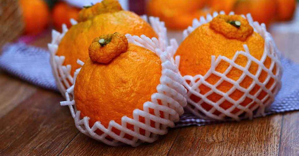 Época da tangerina! Capriche nas receitas