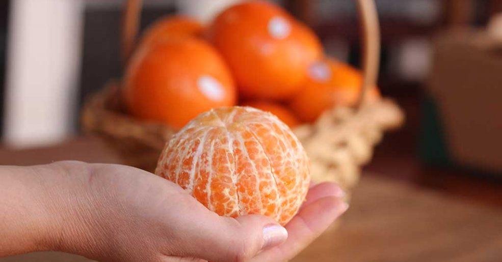 Nutricionista recomenda consumo de Tangerina, rica em vitamina C