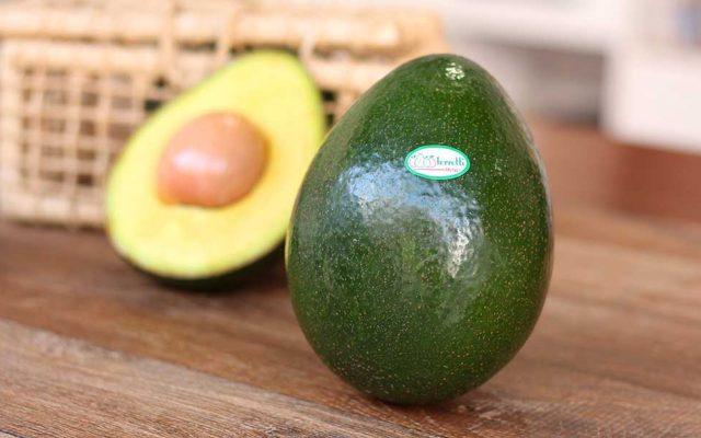 O abacate arrasa! Veja os benefícios e como inclui-lo nas refeições