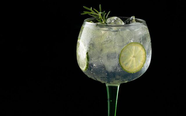 Gin tônica com limão e alecrim